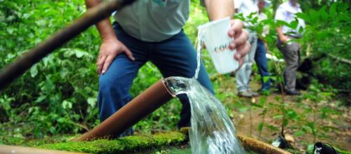 A água é fundamental para os organismos vivos. Sem água não há vida. www.google.com.br