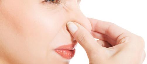 ¿Sabía usted que hasta su alimentación puede interferir en el olor que su sudor exhala?