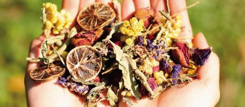 Productos naturales recomendables — DSalud - dsalud.com