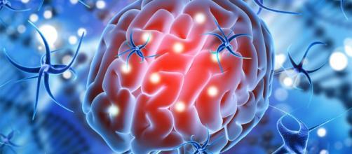 Revivir a personas con muerte cerebral, cada vez más cerca | EL DEBATE - com.mx