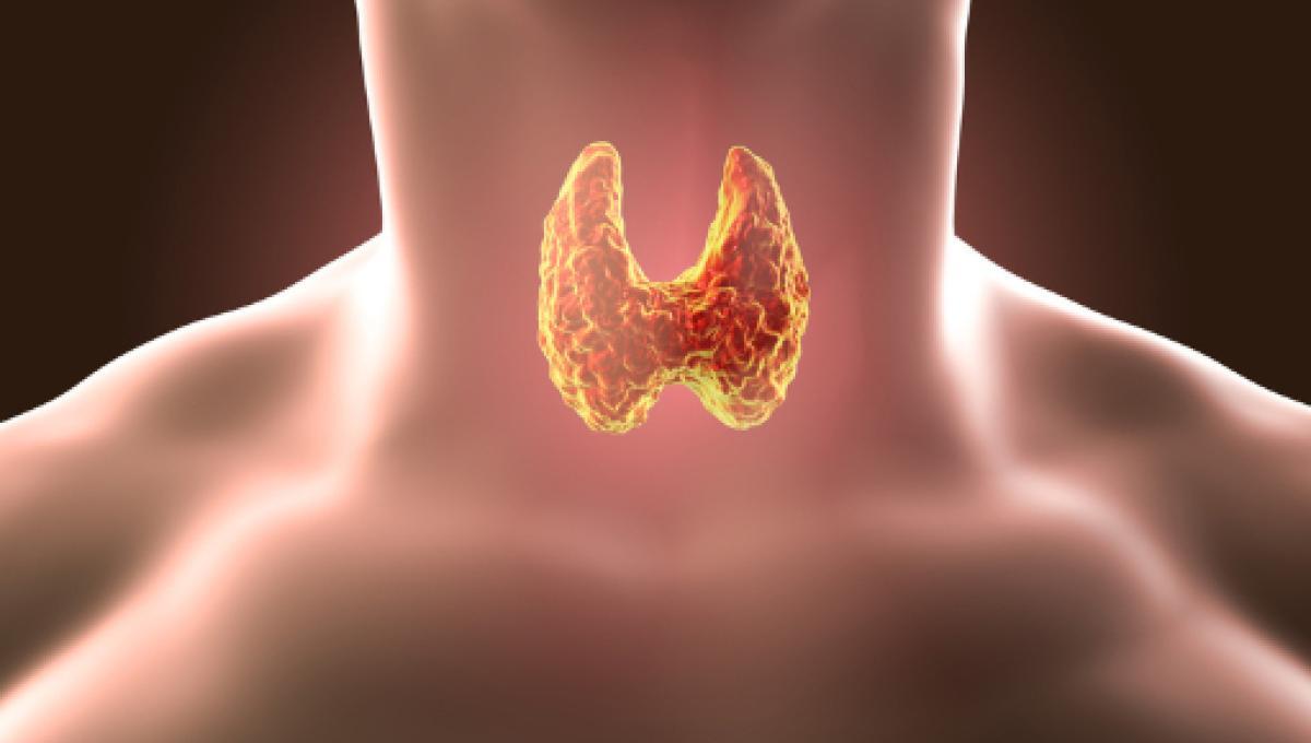 tiroide ansia e attacchi di panico