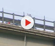 Ha lanciato dal viadotto della A14 la figlia della convivente, per poi uccidersi dopo 7 ore di trattative.