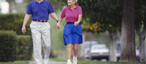 Ejercicios para personas adultas | Rutinas de gimnasio ... - adicciongym.com