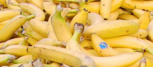 Fruta: el banano mas imformacion