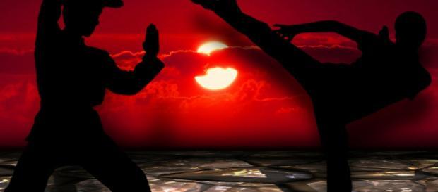 Jules Nasso speaks about Netflix martial arts action 'Darc' Photo via kalhh / 3784 images, Pixabay -