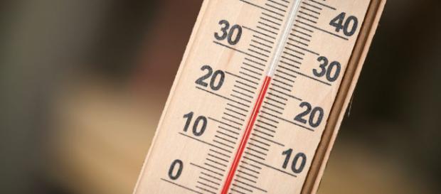 Thermometer: Das perfekte Instrument zum Kontrollieren von ... - haushaltsapparate.net