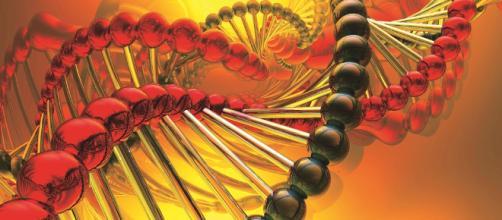 Logran modificar genes de embriones humanos - com.mx