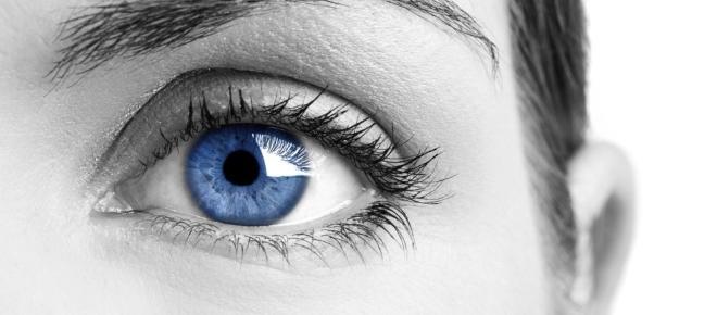 Medir el dominio del idioma a través del movimiento ocular
