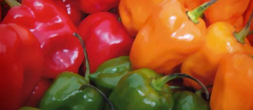 DIFERENTES TIPOS DE CHILES | Peque Lopez - wordpress.com