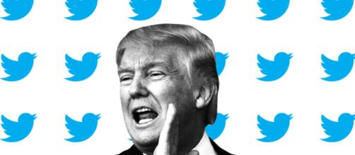 What Trump See When He's on Twitter | Big Think - bigthink.com