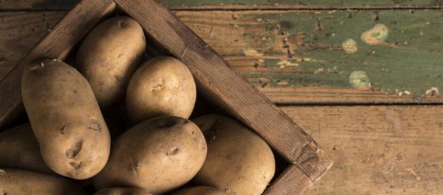 Kartoffeln Archive - Salzkartoffeln - salzkartoffeln.com