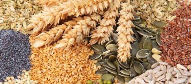Comer más fibra ayuda a reducir grasas - #DrCormillot - drcormillot.com