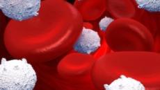 Carrera para encontrar la cura para virus raros que pueden causar leucemia