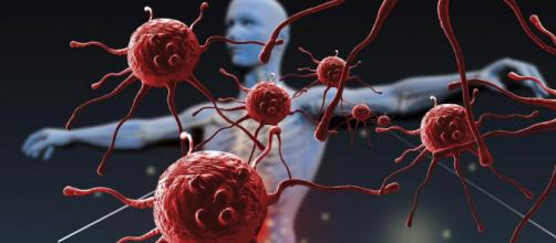 Foto repertorio, virus e batteri