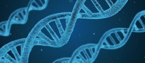 Investigadores descifren ADN de africano Hans Jonatan que llegó a Islandia.