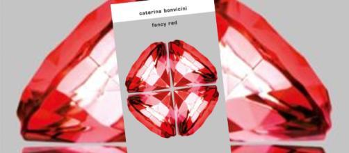 Nuovo romanzo per Caterina Bonvicini