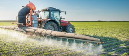 Onu, pesticidi inutili che provocano 200.000 morti all'anno ... - fancityacireale.it