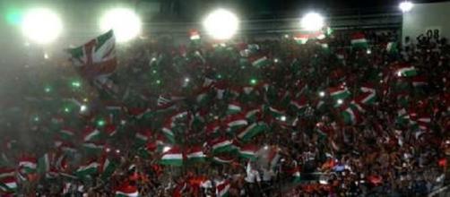 Torcida do Fluminense no Maracanã (Foto: Nelson Peres)