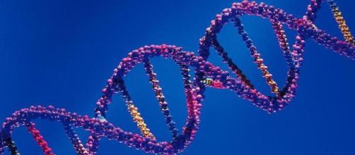 Los genes malos no siempre son malas noticias • El Nuevo Diario - com.ni