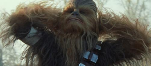 Speedy baby dressed as Chewbacca wins Star Wars-themed baby race ... - usatoday.com
