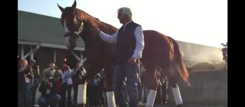 Thoroughbred race horse, Justify, with trainer Bob Baffert. [Image Credit: World of the Internet / YouTube]
