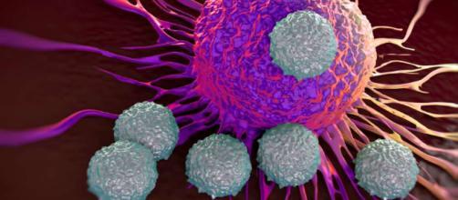 El biosensor que detecta tumores malignos antes de que se originen ... - eldiariony.com
