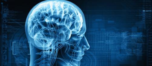 Esta tecnología podría hacer que los implantes cerebrales sean ... - elespanol.com