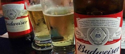 Este será el nuevo nombre de la cerveza Budweiser