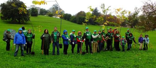 Reforestación en el entorno de la Cueva de Altamira - blogspot.com
