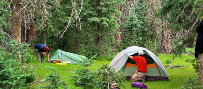 ¿Vas de camping? ten en cuenta estos consejos