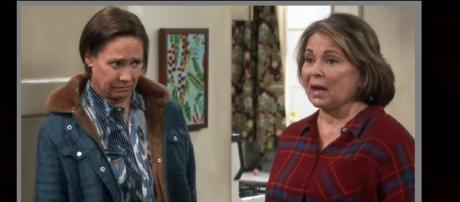 'Roseanne' on Fox? What does Roseanne Barr have to say? Photo: Niki Swift/YouTube Screenshot