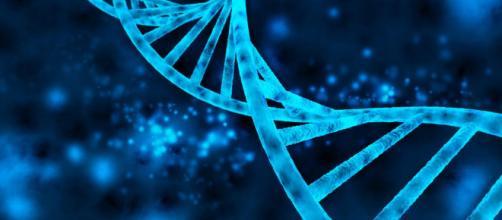 el primer atlas de la regulación de los genes en el cuerpo humano - lavanguardia.com