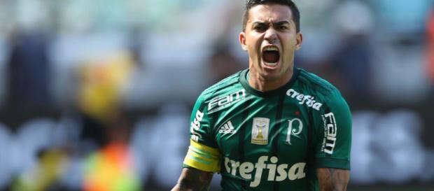 Brasileirão ao vivo: Cruzeiro x Palmeiras
