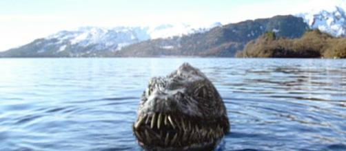 Il mostro di Loch Ness: secolare 'fake news' o grande rettile estinto? Un team di scienziati indaga.
