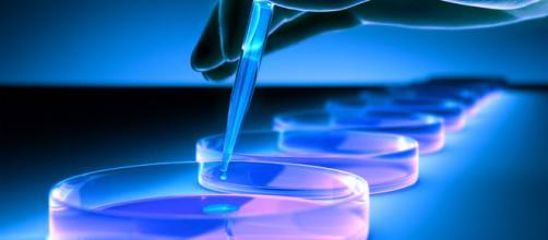 La produzione certificata di cellule staminali - FBOV - fbov.org
