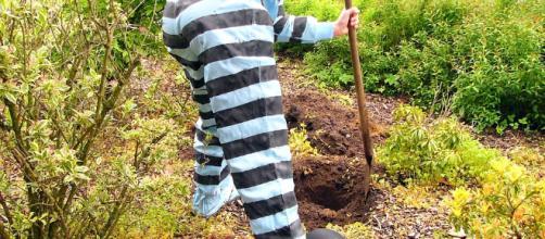 Digging a hole. - [Image via Pixabay / Maret Hosemann]