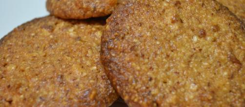 Más allá del gluten...: Galletas de Coco sin huevo (Receta SCD ... - masalladelgluten.com