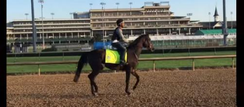 My Boy Jack the horse to watch at 2018 Kentucky Derby. Photo: HorseRacingNation YouTube screenshot