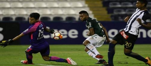 Palmeiras vence fora de casa e garante primeiro lugar do Grupo 8 - Foto: Cesar Greco / Facebook SE Palmeiras