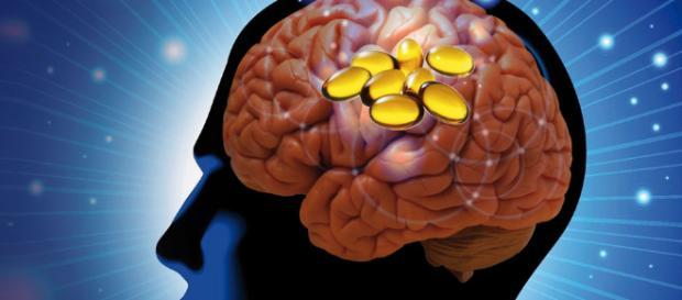 Importancia de la reelina y los omega 3 para las disfunciones - dsalud.com