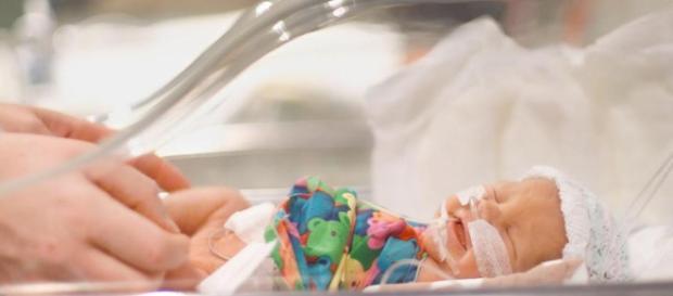 Pediatras en Mérida | Especialistas Pediatras que brindan ... - pediatrasenmerida.com