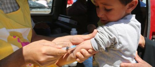 Fotos: Semana Mundial de la Inmunización: Por qué vacunar es más elpais.com