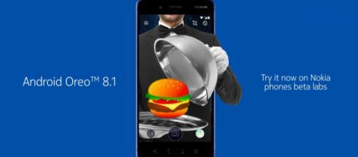HMD opens Nokia 8 Android 8.1 Oreo beta program - theandroidsoul.com