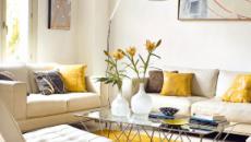 ¿Sabias que las plantas pueden ayudarte a despejar el ambiente de tu casa?