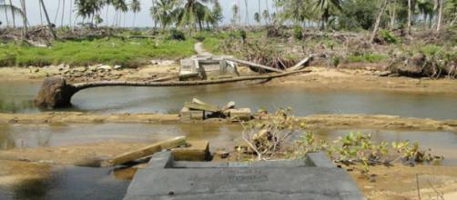 Cambio climático trae desastres naturales y enfermedades - SciDev scidev.net