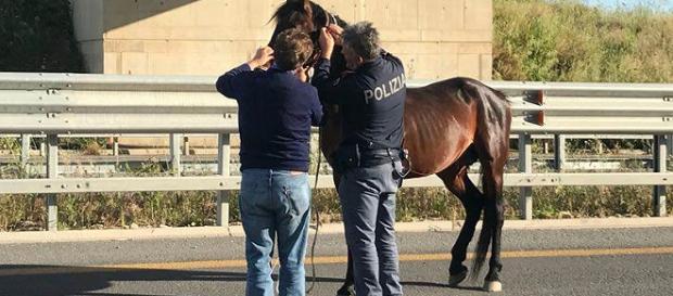 L'intervento della polizia sulla Statale 640