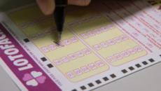 Resultado lotofacil 1659: 2 apostas vão dividir o prêmio da loteria