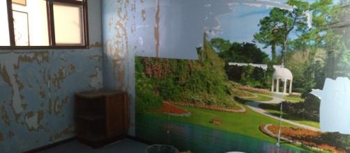 Cuestionamos en una instalación el recurso de la foto sujeta a competir con el paisaje pictórico.