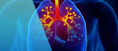 Fibrosis quística: tus propias mucosidades, el enemigo - acunsa.es