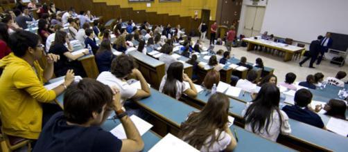 Università: test d'ingresso sbagliato, tutti ammessi - firenzetoday.it